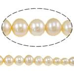 Round Beads kulturuar Pearl ujërave të ëmbla, Pearl kulturuar ujërave të ëmbla, asnjë, rozë, AA, 3.5-8mm, : 0.8mm, :16Inç,  16Inç,
