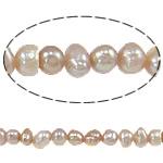 Barok Beads kulturuar Pearl ujërave të ëmbla, Pearl kulturuar ujërave të ëmbla, Oval, asnjë, rozë, 3-4mm, : 0.8mm, : 14.3Inç,  14.3Inç,