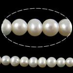 Round Beads kulturuar Pearl ujërave të ëmbla, Pearl kulturuar ujërave të ëmbla, asnjë, e bardhë, Një, 9-10mm, : 0.8mm, :15Inç,  15Inç,