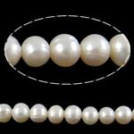 Barok Beads kulturuar Pearl ujërave të ëmbla, Pearl kulturuar ujërave të ëmbla, Round, natyror, e bardhë, 9-10mm, : 1.5mm, :15Inç,  15Inç,