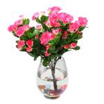 Lule artificiale Kryesore Dekor, Mëndafsh, Shape Tjera, asnjë, asnjë, rozë, 365x310mm, 10PC/Qese,  Qese