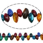 Beads Natyrore Colored Shell, Predhë, Shape Tjera, i lyer, asnjë, ngjyra të përziera, 10x6mm, : 0.8mm, : 14.5Inç, 10Fillesat/Qese,  Qese
