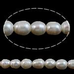 Rajs Beads ujërave të ëmbla kulturuar Pearl, Pearl kulturuar ujërave të ëmbla, Oriz, natyror, e bardhë, Një, 9-10mm, : 2mm, :15Inç,  15Inç,