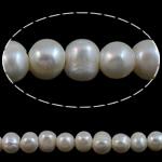 Barok Beads kulturuar Pearl ujërave të ëmbla, Pearl kulturuar ujërave të ëmbla, Oval, natyror, e bardhë, 8-9mm, : 2mm, : 15Inç,  15Inç,