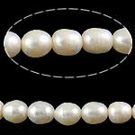Rajs Beads ujërave të ëmbla kulturuar Pearl, Pearl kulturuar ujërave të ëmbla, Oriz, natyror, e bardhë, Një, 8-9mm, : 1.5mm, :14.5Inç,  14.5Inç,