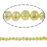 Barok Beads kulturuar Pearl ujërave të ëmbla, Pearl kulturuar ujërave të ëmbla, Nuggets, i lyer, i verdhë, 7-8mm, : 1mm, :14.5Inç,  14.5Inç,