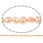 Barok Beads kulturuar Pearl ujërave të ëmbla, Pearl kulturuar ujërave të ëmbla, Nuggets, natyror, rozë, 6-7mm, : 1mm, :14.7Inç,  14.7Inç,