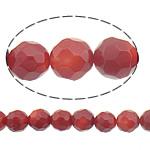 Beads Natyrore Coral, Coral Natyrore, Round, i kuq, 7mm, : 0.5mm, :16Inç, 10Fillesat/Shumë,  Shumë