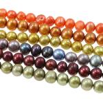 Patates Beads ujërave të ëmbla kulturuar Pearl, Pearl kulturuar ujërave të ëmbla, i lyer, ngjyra të përziera, 7-8mm, : 0.8mm, : 16.5Inç, 50Fillesat/Qese,  Qese