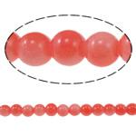 Glass Beads Moda, Xham, Round, i lyer, asnjë, dy-ton, 8mm, : 1.5mm, :31.4Inç, 10Fillesat/Qese,  Qese