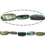 Beads predhë guaskë, Drejtkëndësh, asnjë, asnjë, asnjë, 14-16x7.5x5mm, : 1mm, :16Inç, 26PC/Fije floku,  16Inç,