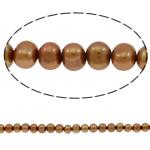 Round Beads kulturuar Pearl ujërave të ëmbla, Pearl kulturuar ujërave të ëmbla, i lyer, bojë kafe, 8-9mm, : 0.8mm, : 15.7Inç,  15.7Inç,
