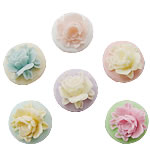 Different Background Cameo Resin Cabochon, Flower, mixed, 10x17mm, Approx 1000PCs/Bag, Sold by Bag