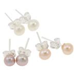 Ujërave të ëmbla Pearl Ring Finger, Pearl kulturuar ujërave të ëmbla, with Tunxh, Round, natyror, ngjyra të përziera, 3.5-4mm, 22x14x3.5cm, 72Çiftet/Kuti,  Kuti
