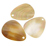 Pendants Shell, Deti Shell, Lot, asnjë, asnjë, asnjë, 27x35x1-2mm, : 3mm, 50PC/Shumë,  Shumë