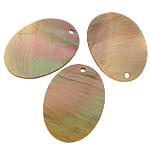 Pendants Shell, Deti Shell, Oval Flat, asnjë, asnjë, asnjë, 10x14x1mm, : 1mm, 200PC/Shumë,  Shumë