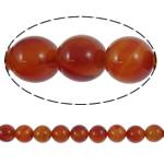 Beads Kuq Natyrore agat, Red agat, Round, natyror, asnjë, 14mm, : 2mm, :15.7Inç, 5Fillesat/Shumë,  Shumë