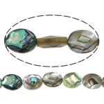 Beads predhë guaskë, Shell Guaskë, Oval Flat, asnjë, faceted, asnjë, 8x10x4mm, : 1mm, :16Inç, 2Fillesat/Shumë, 40 Pcs/Strand,  Shumë