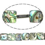 Beads predhë guaskë, Shell Guaskë, Katror, asnjë, asnjë, asnjë, 12x12x4mm, : 1mm, :15.5Inç, 5Fillesat/Shumë, 32Pcs/Strand,  Shumë