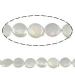 Monedhë Beads ujërave të ëmbla kulturuar Pearl, Pearl kulturuar ujërave të ëmbla, AA, 15mm, : 0.8mm, :15Inç,  15Inç,
