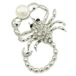 Karficë zbukurimi diamant i rremë, Pearl kulturuar ujërave të ëmbla, with Alloy zink, Akrepi, ngjyrë platin praruar, me diamant i rremë, asnjë, 41x56x18.50mm,  PC