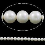 Round Beads kulturuar Pearl ujërave të ëmbla, Pearl kulturuar ujërave të ëmbla, with Cord najlon, natyror, asnjë, e bardhë, AAA, 12-13mm, : 1mm, :15.7Inç,  15.7Inç,