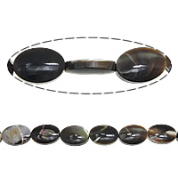 Turbanschnecken Perle, flachoval, 13x9x4mm, Bohrung:ca. 1mm, Länge:ca. 16 ZollInch, 5SträngeStrang/Menge, verkauft von Menge