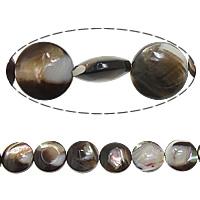 Turbanschnecken Perle, flache Runde, 10x4mm, Bohrung:ca. 1mm, Länge:ca. 15.5 ZollInch, 5SträngeStrang/Menge, verkauft von Menge