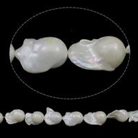 Kultivierte kernhaltige Süßwasserperlen, kultivierte Süßwasser kernhaltige Perlen, Keishi, natürlich, weiß, 18-20mm, Bohrung:ca. 0.8mm, verkauft per ca. 15.7 ZollInch Strang