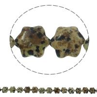 Dalmatinische Perlen, Dalmatiner, Blume, natürlich, 13x15x5mm, Bohrung:ca. 1.5mm, ca. 28PCs/Strang, verkauft per ca. 15.7 ZollInch Strang