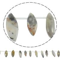 Natürliche verrückte Achat Perlen, Verrückter Achat, Pferdeauge, 8-15x20-40mm, Bohrung:ca. 1mm, Länge:ca. 15 ZollInch, 5SträngeStrang/Tasche, ca. 18PCs/Strang, verkauft von Tasche