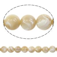 Turbanschnecken Perle, rund, natürlich, verschiedene Größen vorhanden, Länge:ca. 15 ZollInch, verkauft von Menge