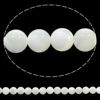 Natürliche weiße Muschelperlen, rund, 8mm, Bohrung:ca. 1mm, Länge:ca. 15.5 ZollInch, 10SträngeStrang/Tasche, ca. 51PCs/Strang, verkauft von Tasche