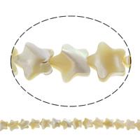 Natürliche gelbe Muschelperlen, Stern, 14x3mm, Bohrung:ca. 1mm, ca. 32PCs/Strang, verkauft per ca. 15.5 ZollInch Strang