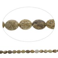 Bild Jaspis Perle, flachoval, 9x11x5mm, Bohrung:ca. 1mm, ca. 37PCs/Strang, verkauft per ca. 15.5 ZollInch Strang