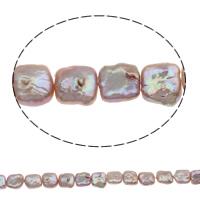 Kultivierte kernhaltige Süßwasserperlen, kultivierte Süßwasser kernhaltige Perlen, Münze, natürlich, violett, 11-12mm, Bohrung:ca. 0.8mm, verkauft per ca. 15.5 ZollInch Strang