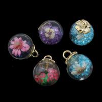 Glassturz Anhänger, Glas, mit Getrocknete Blumen & Zinklegierung Stiftöse & Strass, goldfarben plattiert, keine, 16x20mm, Bohrung:ca. 3x3mm, verkauft von PC