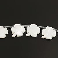 Natürliche weiße Muschelperlen, vierblättriges Kleeblatt, 12x12x2mm, Bohrung:ca. 0.7mm, ca. 20PCs/Strang, verkauft per ca. 11 ZollInch Strang
