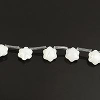 Natürliche weiße Muschelperlen, Blume, 8x8.50x5mm, Bohrung:ca. 0.6mm, ca. 20PCs/Strang, verkauft per ca. 9.5 ZollInch Strang