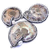 Ammonit fossile Edelstein Anhänger, mit Ton & Natürliche kultivierte Süßwasserperlen & Messing, metallschwarz plattiert, natürliche & gemischt, 38-46x48-61x10-12mm, Bohrung:ca. 2mm, 5PCs/Menge, verkauft von Menge