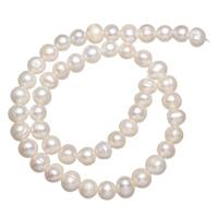 Natürliche Süßwasser, lose Perlen, Natürliche kultivierte Süßwasserperlen, weiß, 8-9mm, Bohrung:ca. 0.8mm, verkauft per ca. 14 ZollInch Strang