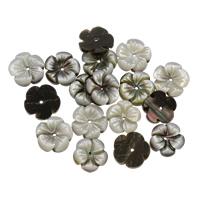 Schwarze Muschelperlen, Blume, verschiedene Größen vorhanden, Bohrung:ca. 0.5-1mm, 50PCs/Tasche, verkauft von Tasche