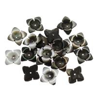 Schwarze Muschelperlen, Blume, 15x12x3mm, Bohrung:ca. 1mm, 50PCs/Tasche, verkauft von Tasche