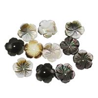 Schwarze Muschelperlen, Blume, 14x3mm, Bohrung:ca. 1mm, 50PCs/Tasche, verkauft von Tasche