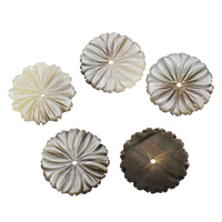 Schwarze Muschelperlen, Blume, 23x2mm, Bohrung:ca. 0.5mm, 10PCs/Tasche, verkauft von Tasche