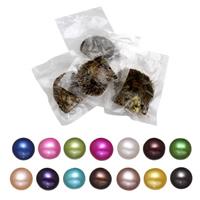 Akoya kultivierte Seeperle Oyster Perlen, Akoya Zuchtperlen, Kartoffel, keine, 7-8mm, verkauft von PC