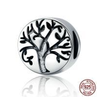 Thailand European Perlen, Baum des Lebens, ohne troll, 10x10mm, Bohrung:ca. 4.5-5mm, verkauft von PC