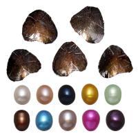 Süßwasser kultivierte Liebe wünschen Perlenaustern, Natürliche kultivierte Süßwasserperlen, Reis, gemischte Farben, 7-8mm, 10PCs/Menge, verkauft von Menge